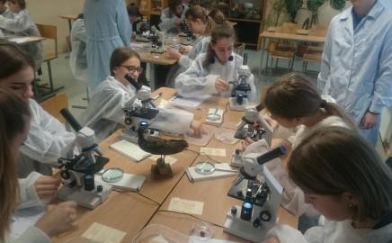 Įdomiosios STEM pamokos