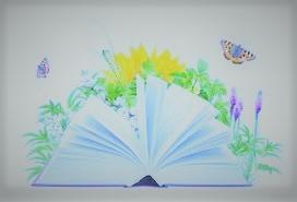 2018 m. progimnazijos biblioteka įsigijo naujų grožinės literatūros knygų