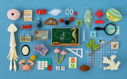 Matematikos ir gamtamokslinio raštingumo konkursas